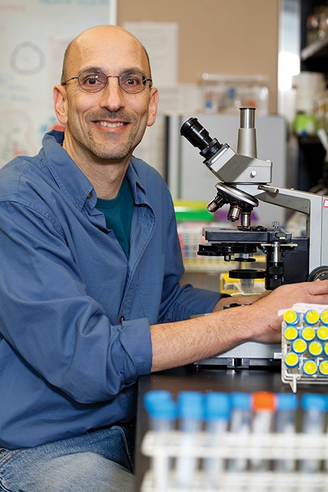 Jeff Silberman, professor of biological sciences.