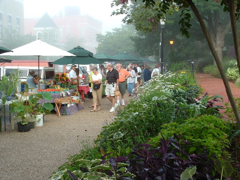 Farmers markets are a great outlet for local growers, but a grant from the USDA Local Foods Promotion Program may help area producers find opportunities to add to the local food system.