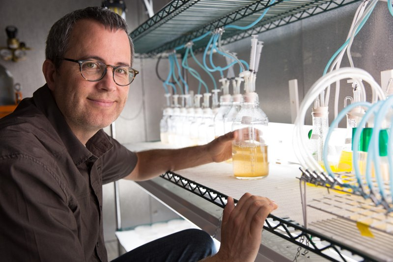 Andrew Alverson with a bioreactor growing marine diatoms in his lab at the University of Arkansas.