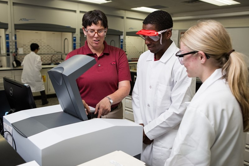 The Encouraging Students in Science program focuses on chemical applications in the areas of energy and materials research.