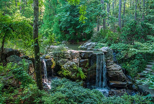 Shady spaces and waterfalls are in abundance at Garvan Woodland Gardens in Hot Springs.