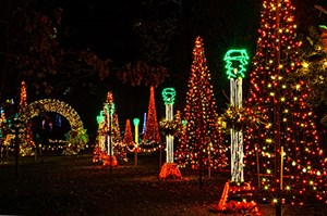 Holiday Lights at Garvan Woodland Gardens