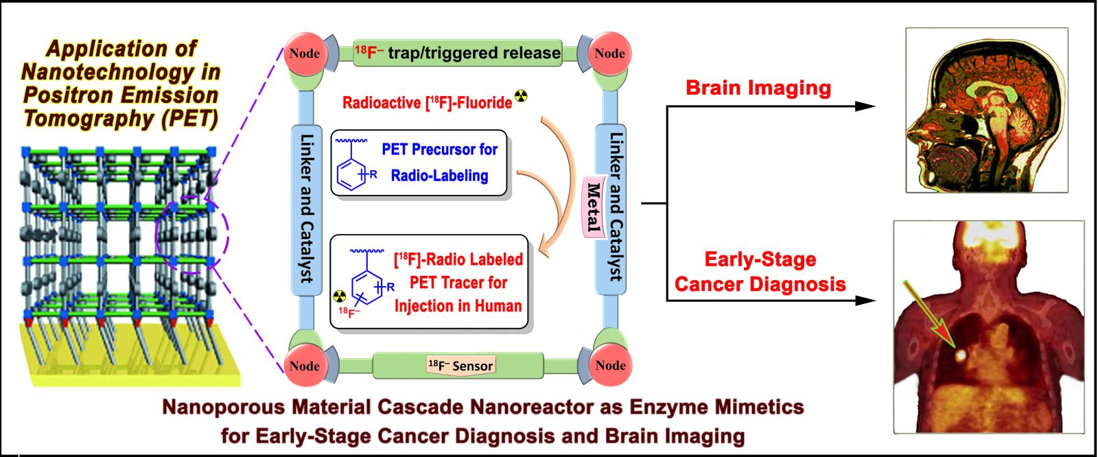 This diagram shows Beyzavi's design for a nanoreactor containing catalysts that can perform the necessary chemical reactions to prepare tracer molecules for use in PET scanning.