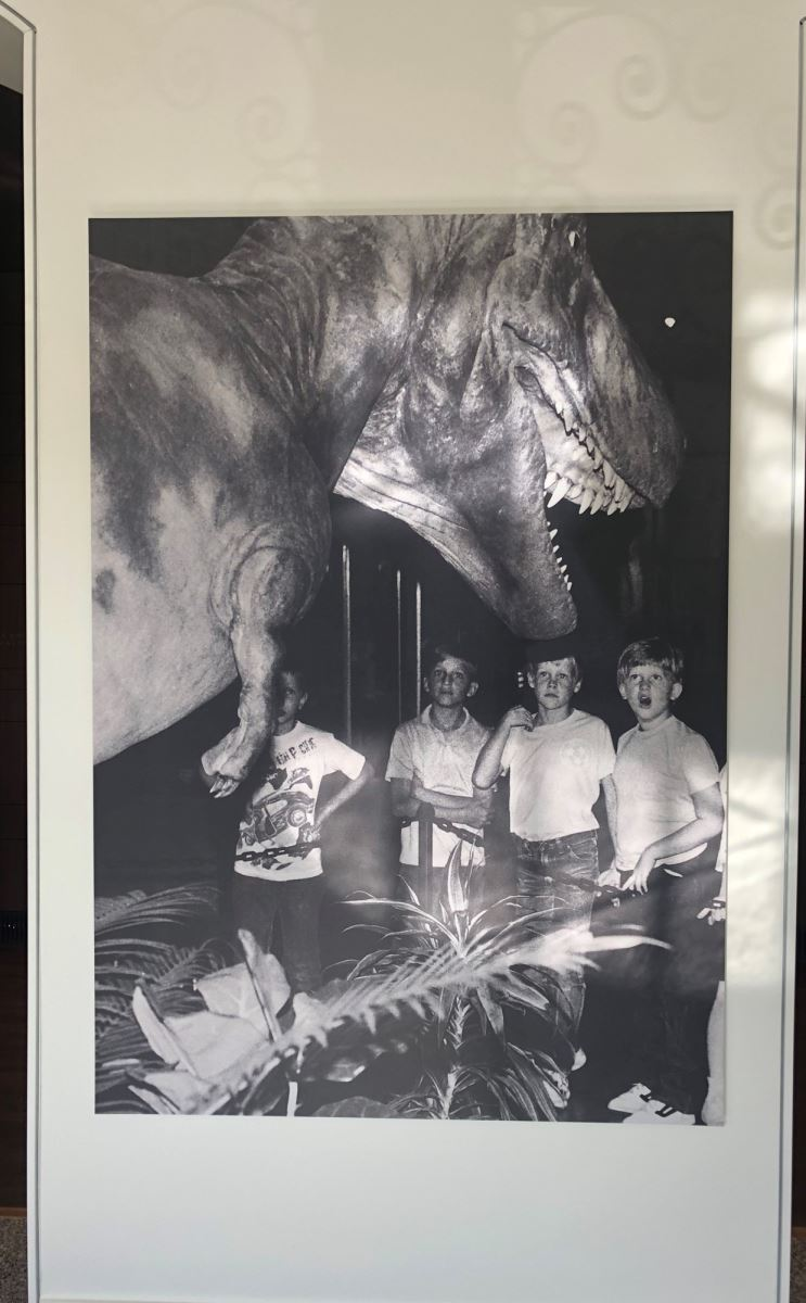 The dinosaur was one of the more popular attractions at the university museum (1990).