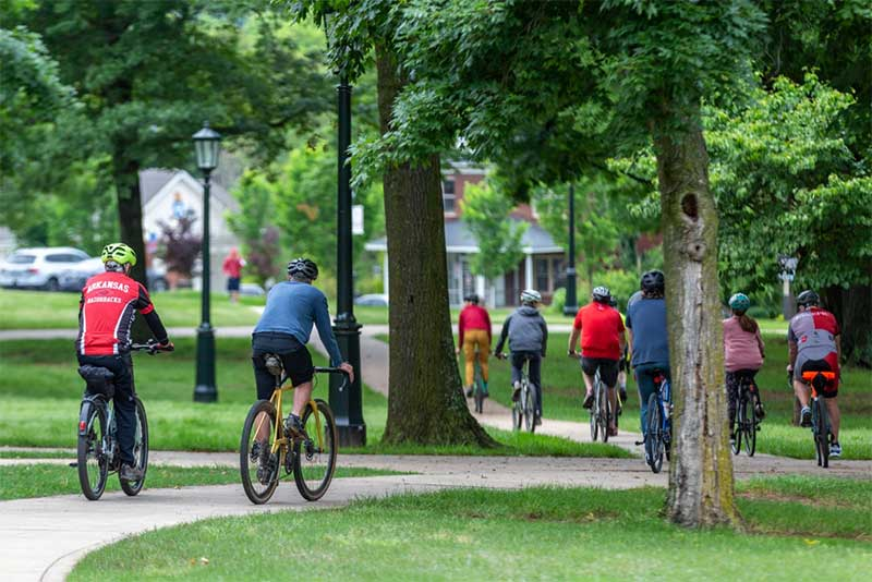 bicyclists ride along Senior Walk while crossing campus