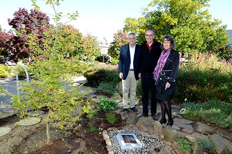 From left, Jon Lindstrom's brothers Mark and Scott, and sister Karen Kimball, stand next to the Japanese Snowbell planted on the University of Arkansas campus in Jon's memory