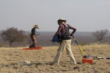 Katie Simon (left) of the Center for Advanced Spatial Technologies at the University of Arkansas and Eileen Ernenwein of East Tennessee State University conduct a geophysical survey on an archaeological site in Botswana. Photo by Carla Klehm, Washington University in St. Louis