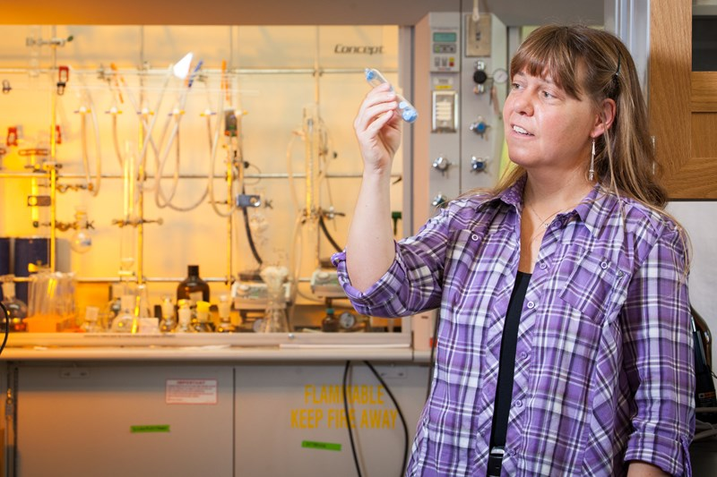 Susanne Striegler, a professor of chemistry and biochemistry, was awarded an Arkansas Biosciences Institute research grant for fiscal 2016.
