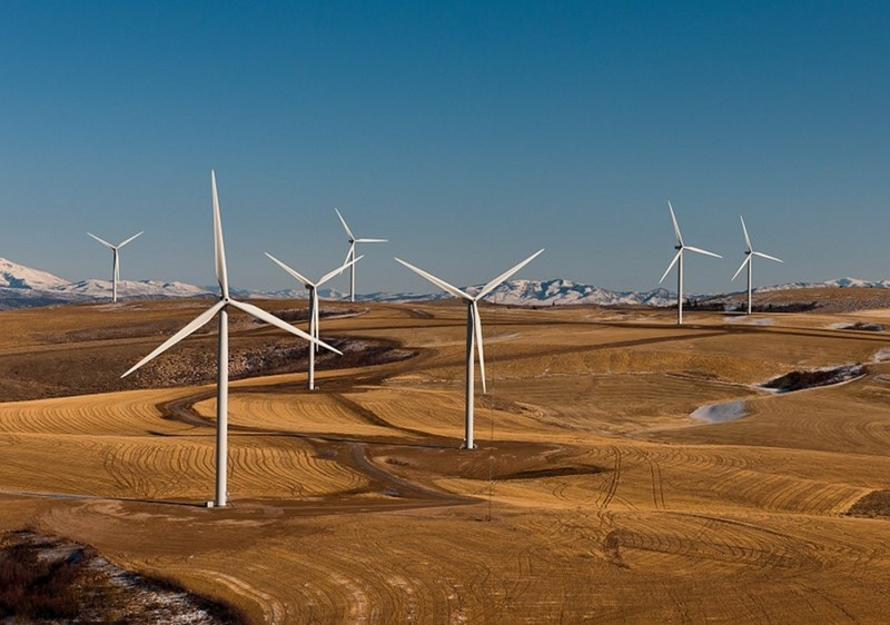 Wind farms are a common source of renewable energy that needs to be stored.