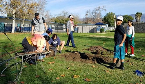 This tree planting is part of Clean & Green Pomona, an environmental action group that aims to clean up and green up the southeastern industrial zone and adjacent neighborhoods of Pomona, California.