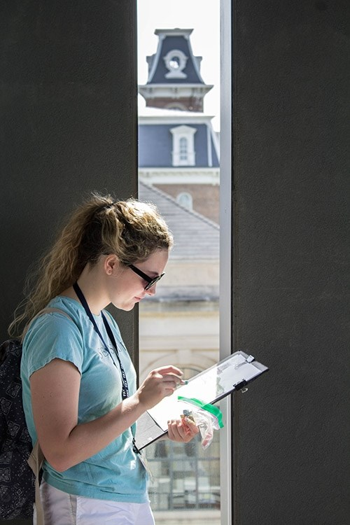 A Design Camp student sketches on the terrace of Vol Walker Hall during the June camp held on the University of Arkansas campus.