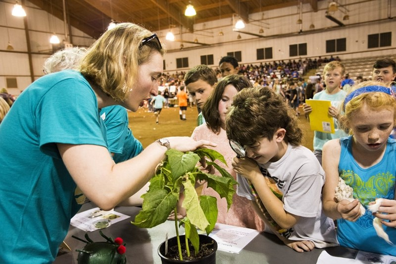 Professor Fiona Goggin talks about bugs on plants during a past Insect Fest.