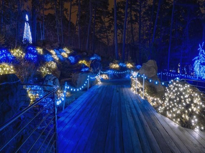 Garvan Gardens Christmas Lights 2021 December At Garvan Woodland Gardens In Hot Springs Highlights Holiday Music And Lights University Of Arkansas