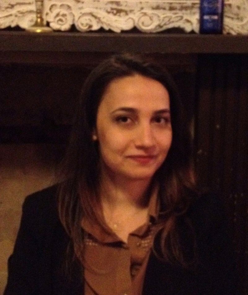 Nazli Özkan, Post-Doctoral Fellow with the King Fahd Center for Middle East Studies, will examine the changing dynamics of state governance in Turkey in its historical and global context on January 22nd, 4:30 p.m. in Arkansas Union room 510-511.