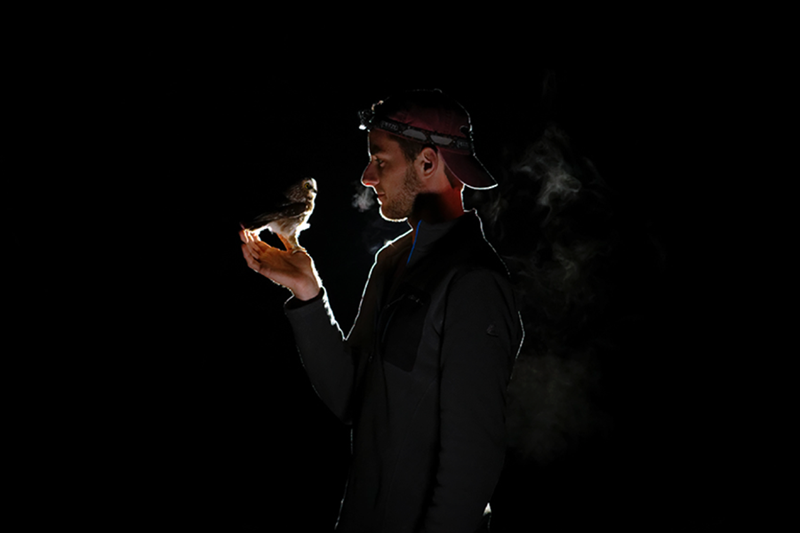 Dark, backlit portrait of Mitchell Pruitt holding a northern saw-whet owl in his hand.