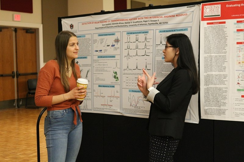 During the poster session, students will get a chance to talk to other honors students who have already successfully completed their honors research.