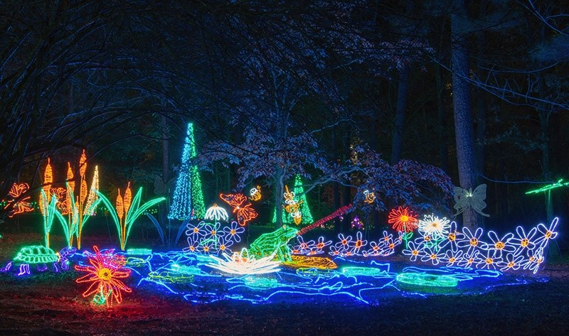 When Is Garvan Gardens Christmas Lights 2020 December at Garvan Woodland Gardens Features Annual 'Holiday