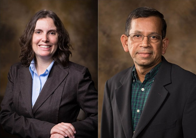 Shannon Servoss, associate professor of chemical engineering, and Suresh Thallapuranam, professor of biochemistry, will serve as co-directors of undergraduate research.