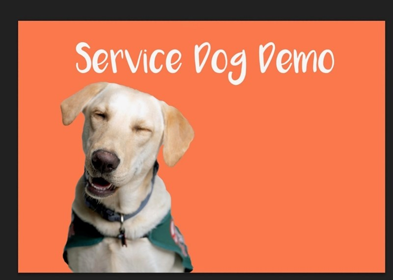 Hogs Service Dogs, a Registered Student Organization at the University of Arkansas, will host an event titled Service Dogs 101 on Saturday, March 20 at 2 p.m. in ARKU 507-509.