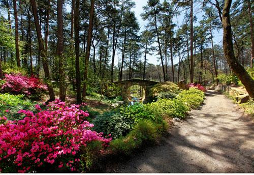 The Joy Manning Scott Full Moon Bridge At Garvan Woodland Garens In Hot  Springs. The